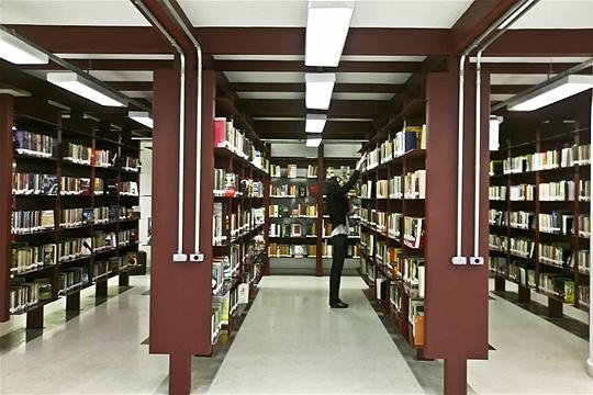 Biblioteca Mário de Andrade (3/5)